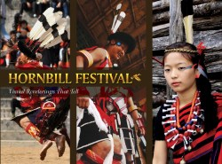 Hornbill Festival Visual Renderings That Tell